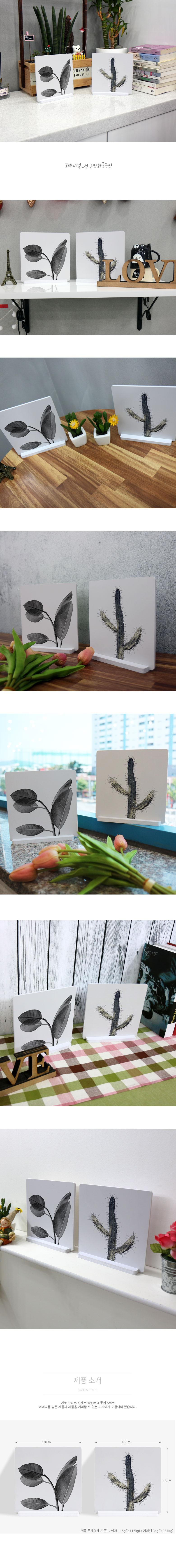 스탠드액자2P_보태니컬_선인장과둥근잎 - 꾸밈, 12,800원, 홈갤러리, 사진아트