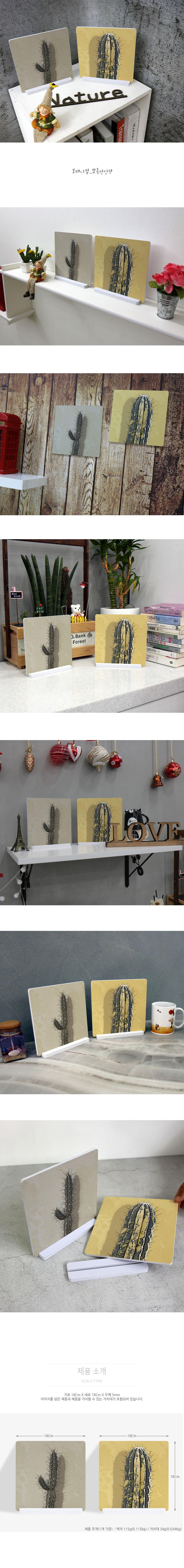 스탠드액자2P_보태니컬_뾰족선인장 - 꾸밈, 12,800원, 홈갤러리, 사진아트