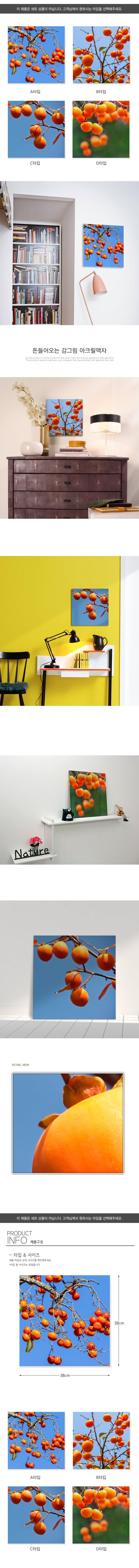 아크릴액자_돈들어오는감그림(중형) - 꾸밈, 25,600원, 홈갤러리, 사진아트